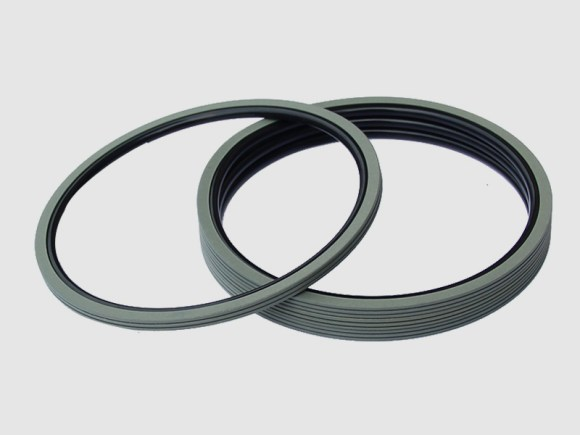DSH-Find Shaft Oil Seal High Pressure Rotary Seal From Dsh Seals-8