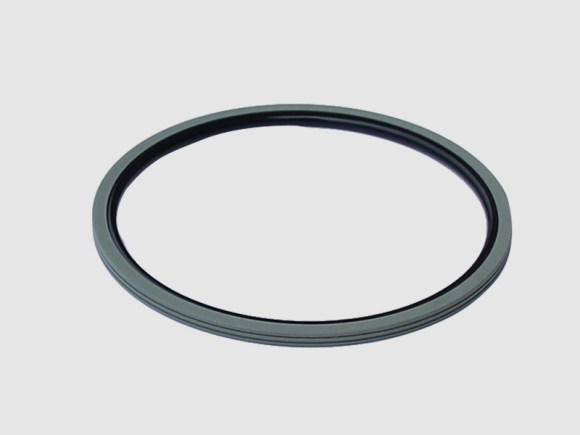 DSH-Find Shaft Oil Seal High Pressure Rotary Seal From Dsh Seals-9