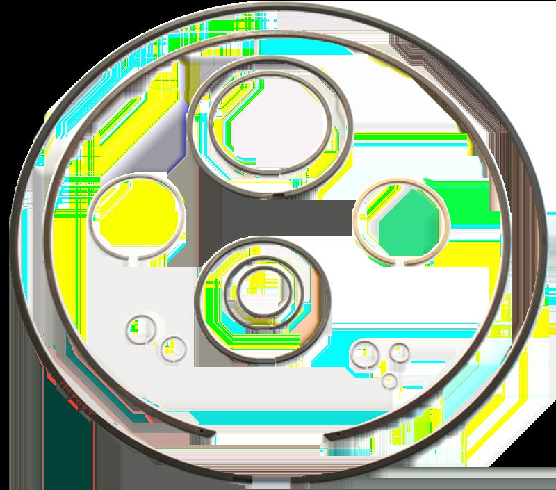 Piston Rings Manufacturers 2021