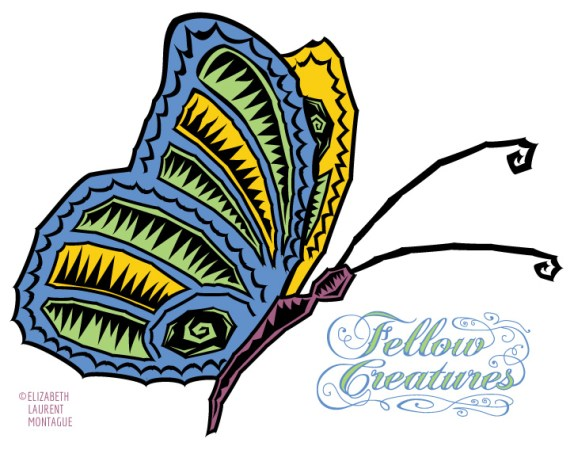 Lost-Butterfly