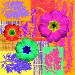Illustration & Montage Design Portfolio
