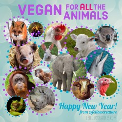 Vegan for all the animals 2021