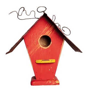 Tweedy Bird House handmade by artist David Bruce ($50 at Seed in Des Moines). Birds of a feather will flock together in  this traditional single-family birdhouse with curb appeal. Wood with a metal roof—and great views!