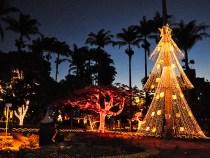 Aberto processo de editais relativos ao Natal da Cidade 2013