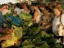 Conselho de Segurança Alimentar realiza eleição