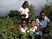 Curso a distância sobre compras da agricultura familiar