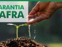 Seguro Garantia Safra 2019: inscrições até 05 de outubro