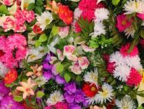 Na vida nem tudo são flores