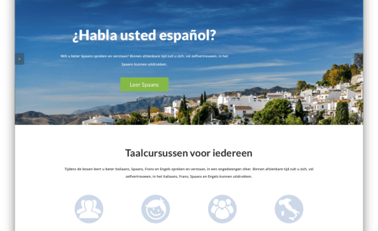 Website taalcursussen