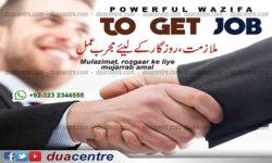 Job, work, carrier, profession, employment, naukri, mulazimat, rozgaar, wazifa for job
