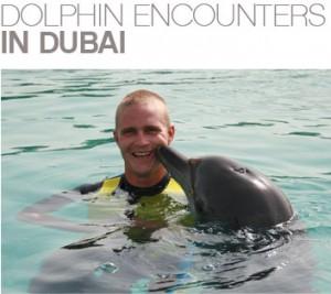 Top Ten Animal Experiences in Dubai
