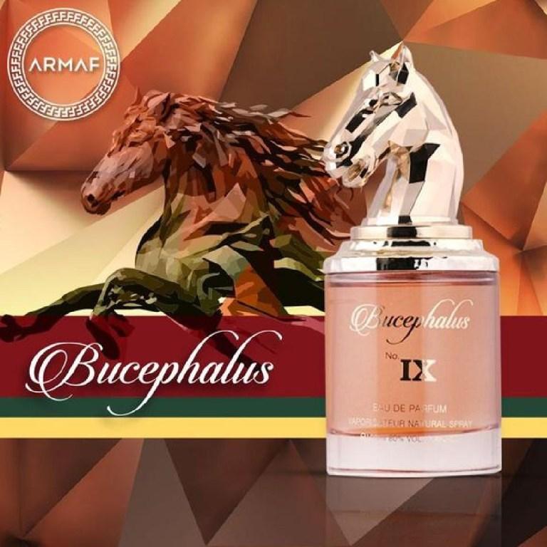 bucephalus no ix parfum