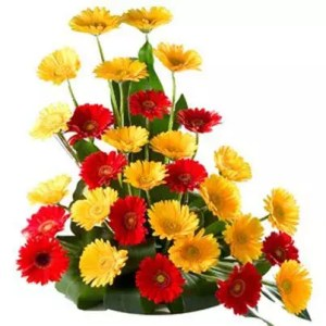 Gerbera 30 flowers in basket