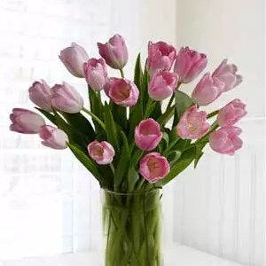 send pink tulips Dubai for home delivery