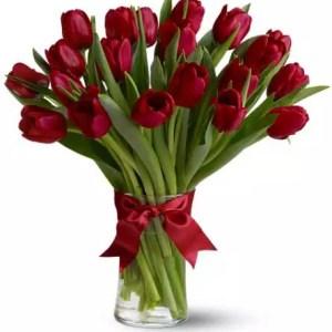 20 Red Tulips in Dubai
