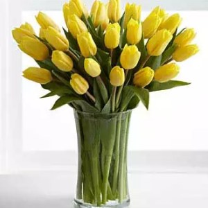 30 yellow Tulips delivery Dubai