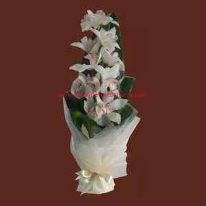 cymbidium orchid flower bouquet