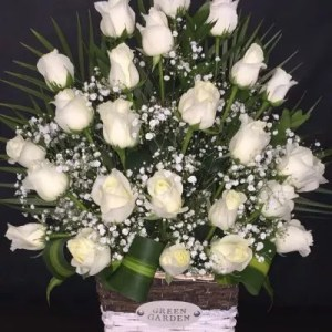 25 white roses basket