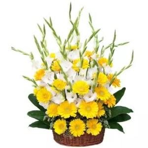 Gladiolus Gerbera flowers in Dubai