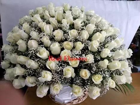 basket of 100 white roses