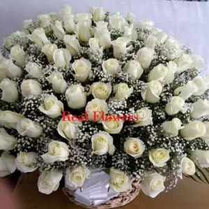 basket of 100 white roses