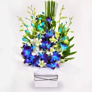 white blue flowers