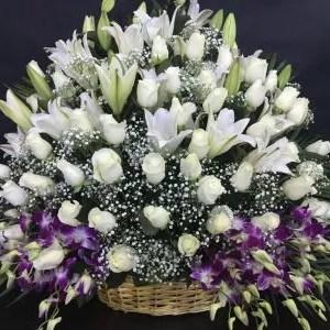 Big flower basket delivery