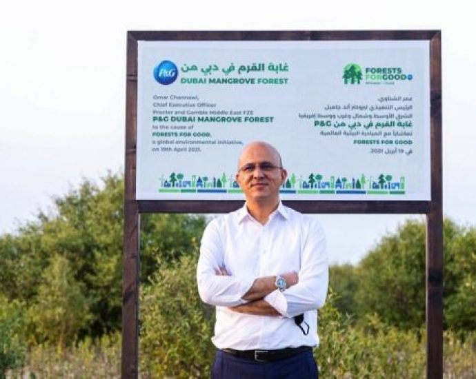 100% self-sustainable mangrove forest inaugurated