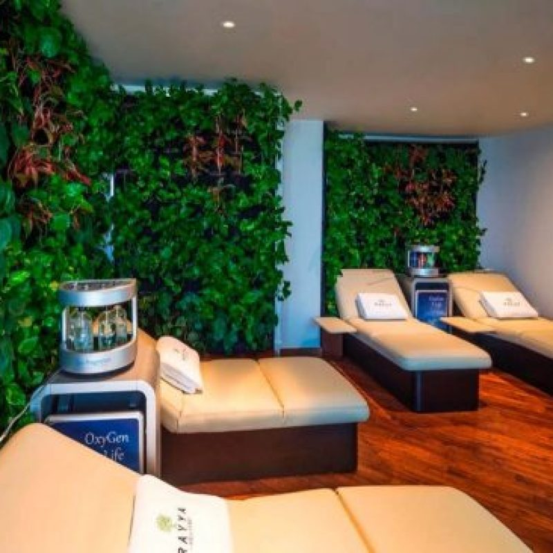 Detox, cleanse, and refresh with a bespoke wellness staycation