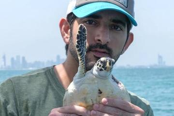 Sheikh Hamdan helps release turtles back into the wild in Dubai