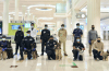 Sniffer dogs are being used to smell out Covid-19 on passengers in Dubai