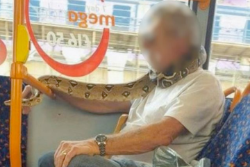 Man uses real life snake as face mask covering on bus