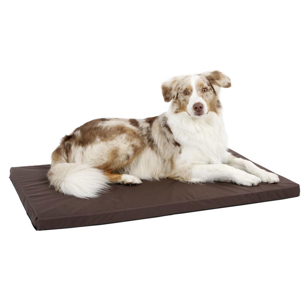 https www ducatillon com produit matelas pour chien dehoussable taille 3 648 46829 html