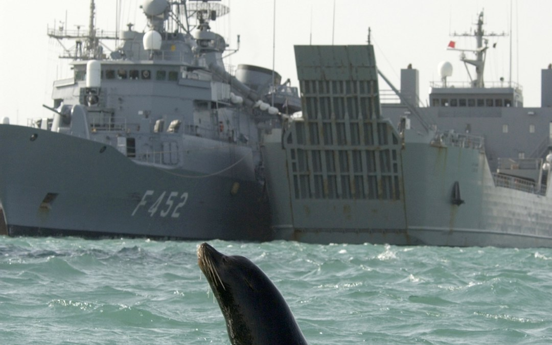 Analogies in War: Marine Mammal Systems and Autonomous Weapons