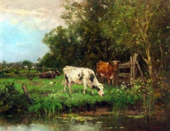 johan-cow