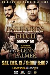 WSOF 16: Palhares vs Fitch, December 13!