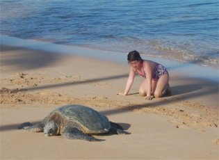 Turtle on the beach with my youngest.