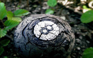 rotting 8-ball in field