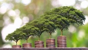 Ökologisch nachhaltig investieren