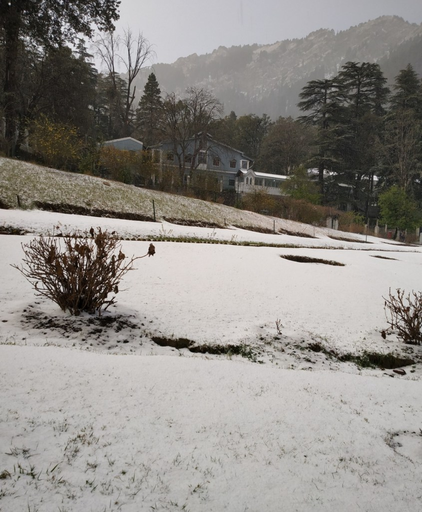 Snowfall photos of Nainital January 2019