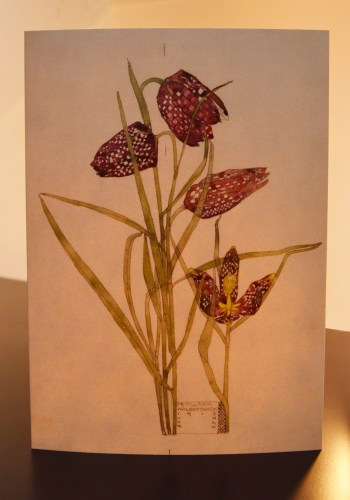 Charles Rennie Mackintosh - Fritillaria