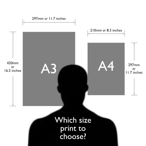 Which print size to choose?