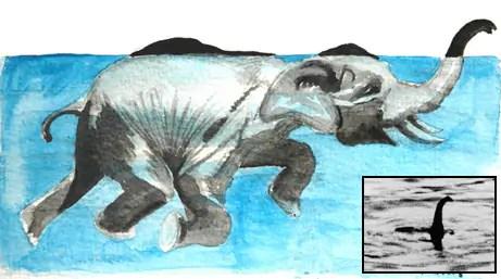 Was het monster van Loch Ness een olifant? •