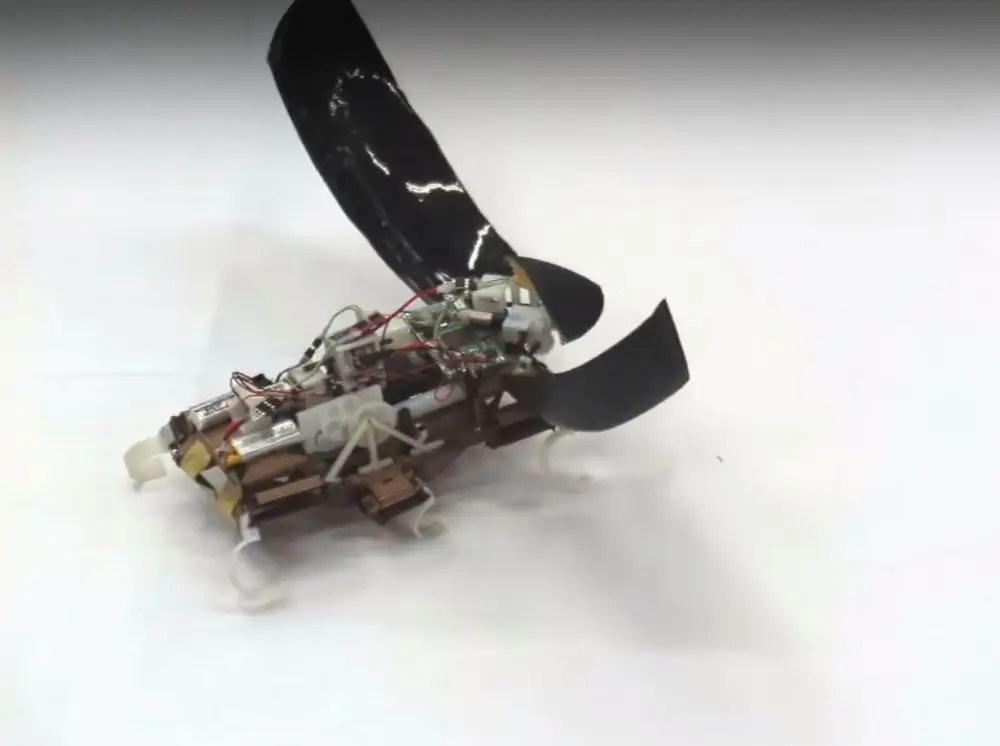 Kakkerlakrobot griezelig en fascinerend