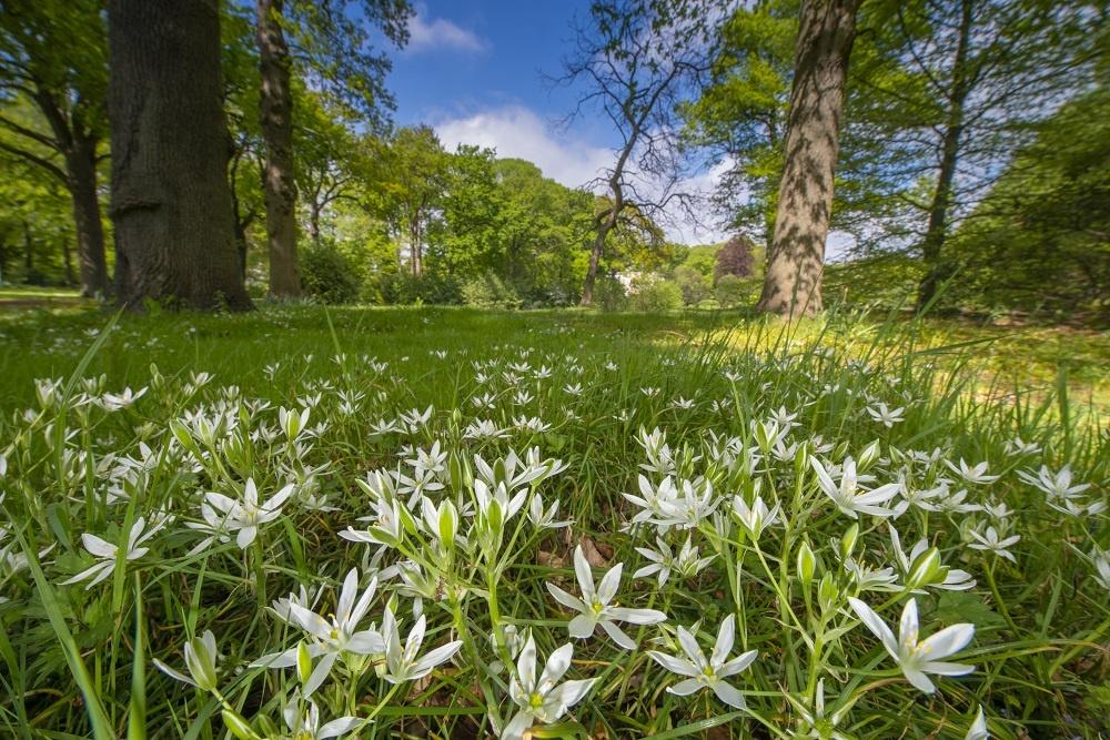 Rust en Vreugd Afwisselend en rijk aan flora en fauna