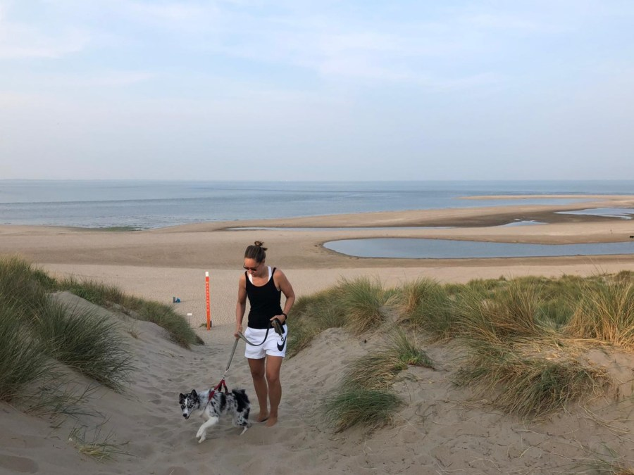 Wandelaar met hond in de duinen door Philo van Lenning.