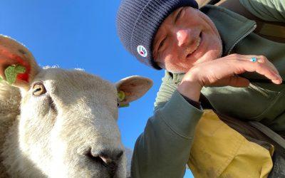 Duinconsulent Marcel met schaap, Texel door Marcel Wijnalda