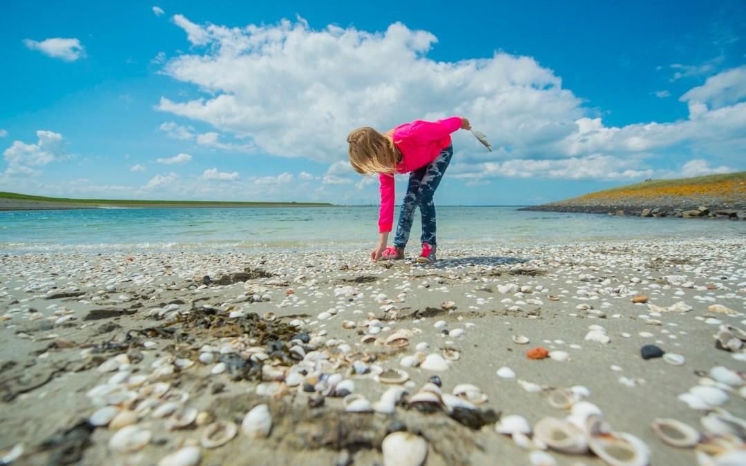 Neeltje Jans, een ongerepte strandplek