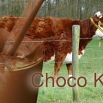 ChokoKoe