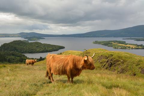 Vườn Quốc gia Loch Lomond và Trossachs, Scotland